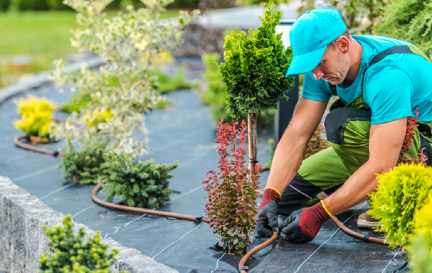 Professional Bainbridge Island Landscaping