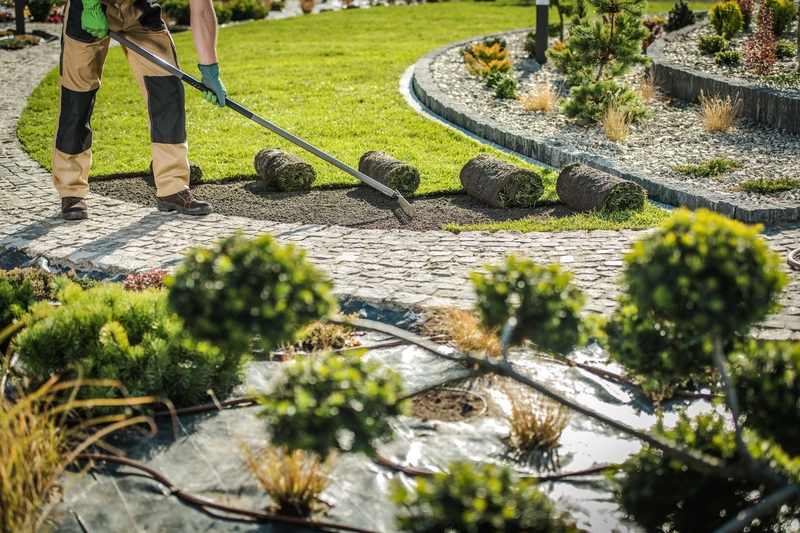 Landscaping a yard on Bainbridge Island
